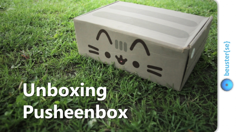 Pusheenbox Frühling 2016 - Unboxing und Review