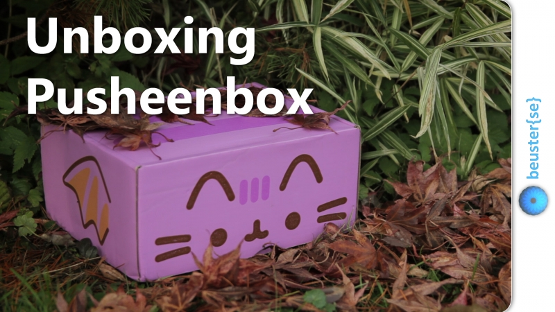 Pusheen Box Herbst 2016 - Unboxing und Review
