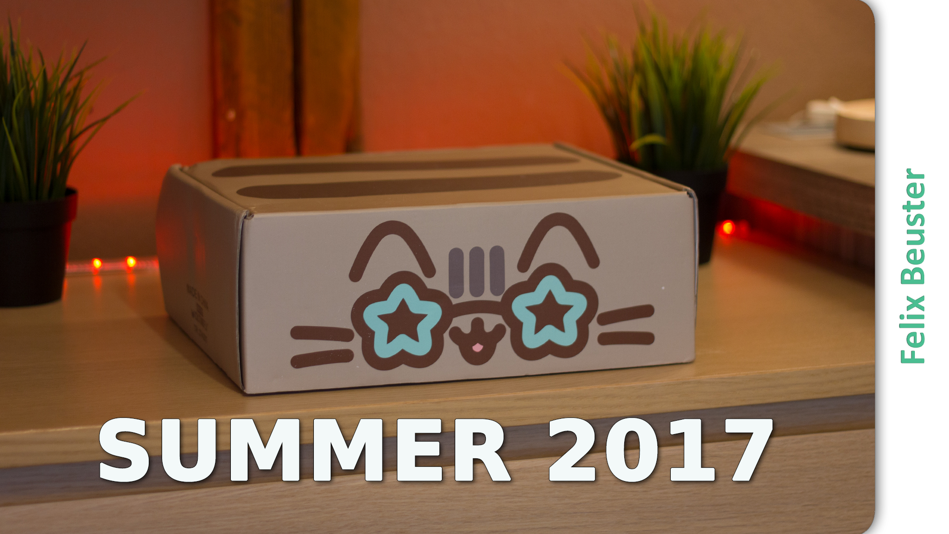 Pusheen Box Sommer 2017 - Unboxing und Review