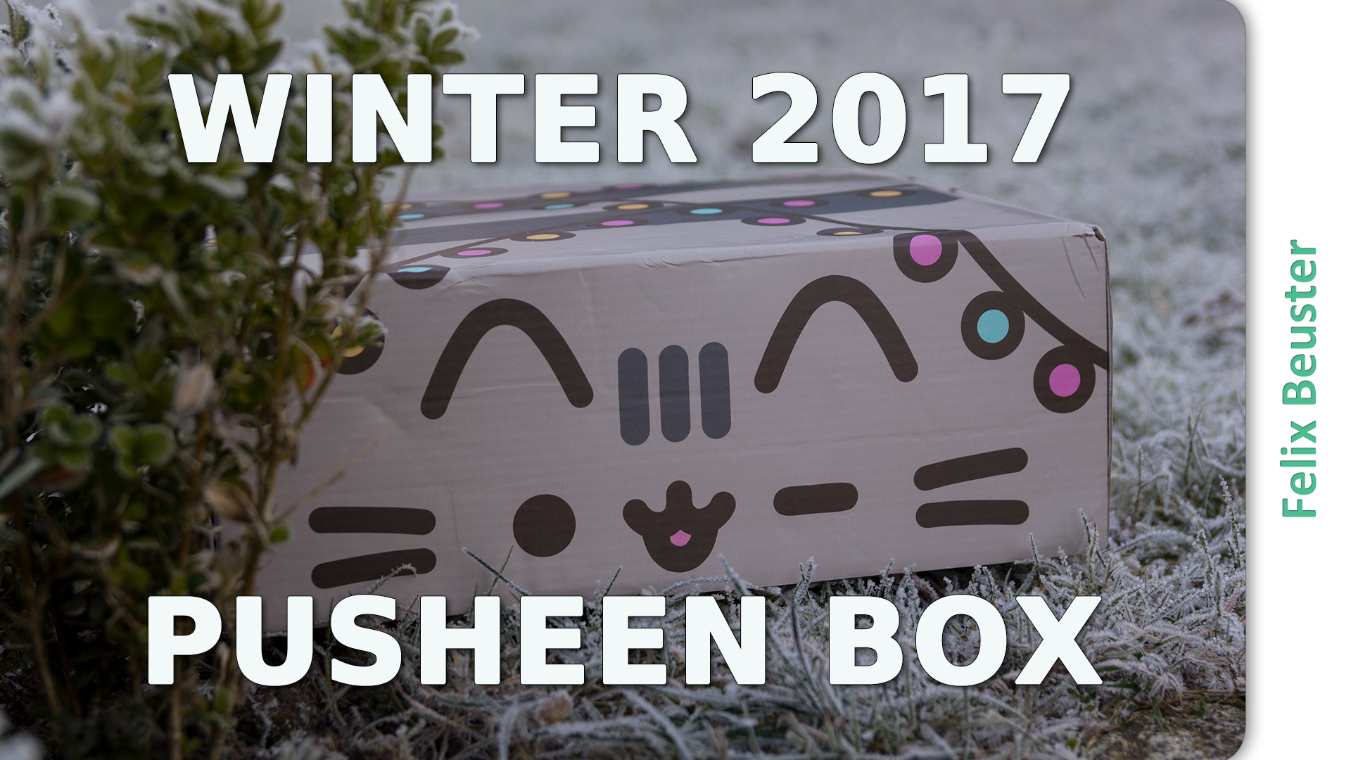 Pusheen Box Winter 2017 - Unboxing und Review