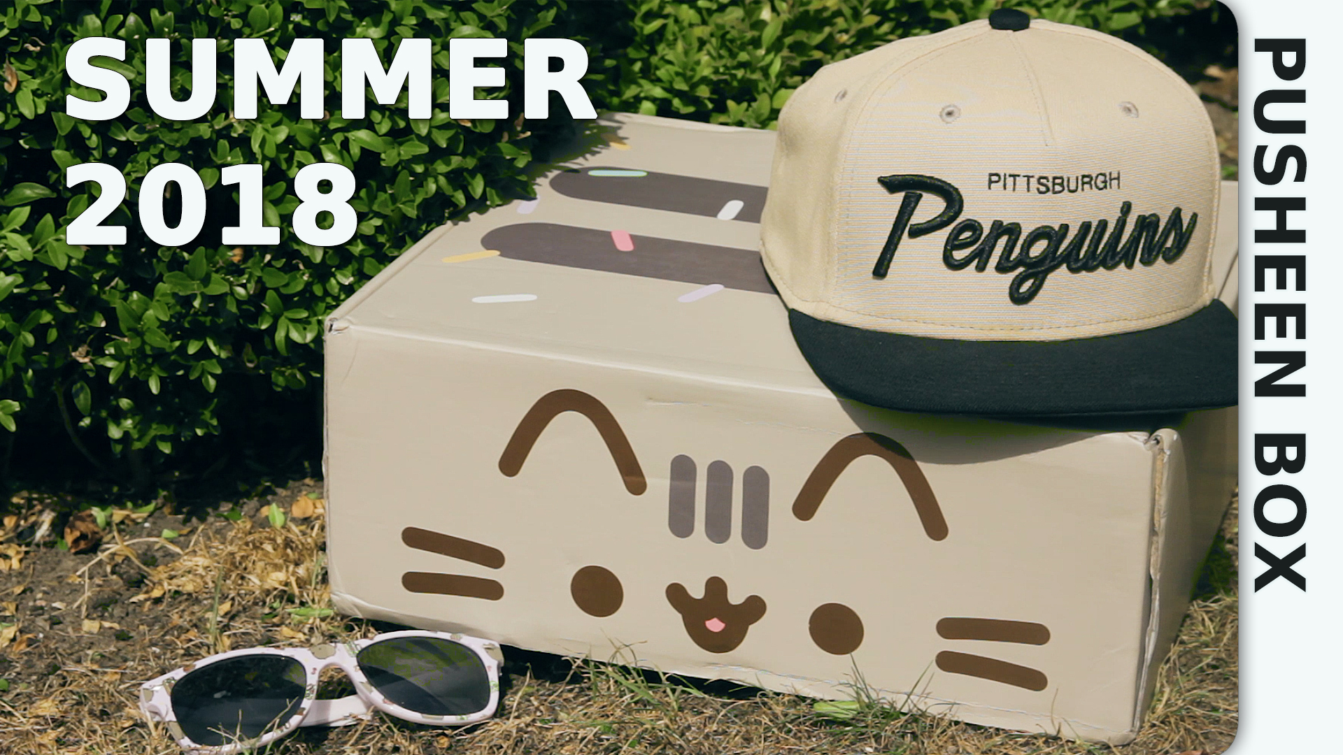 Pusheen Box Sommer 2018 - Unboxing und Review